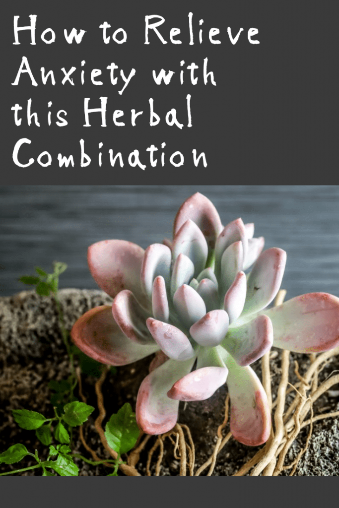Anxiety Relief - Stop and Calm Your Anxiety Naturally   PrimalHerb com