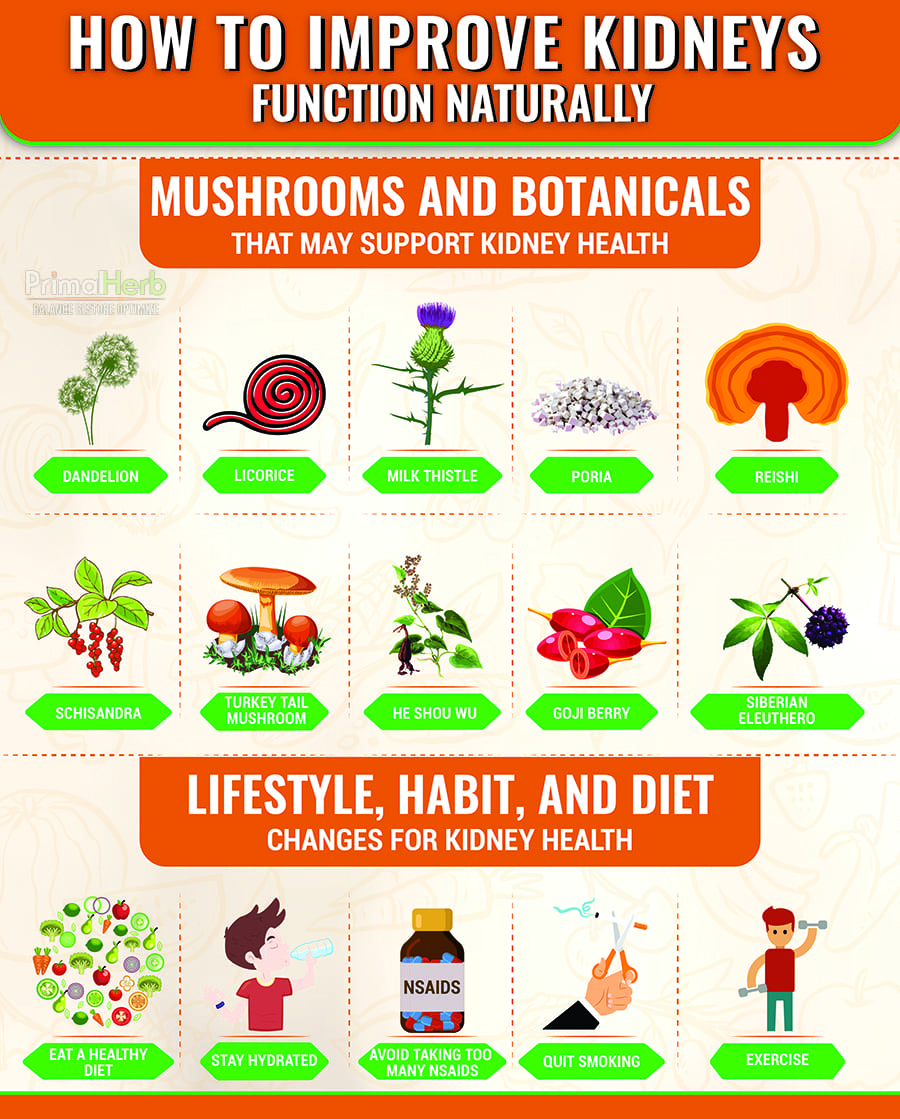 improve kidneys naturally infographic
