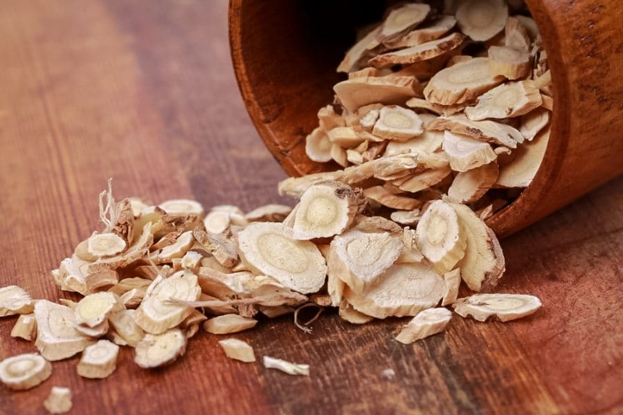 Astragalus Root Benefits | Powerful Top 12 Proven for Health | PrimalHerb.com