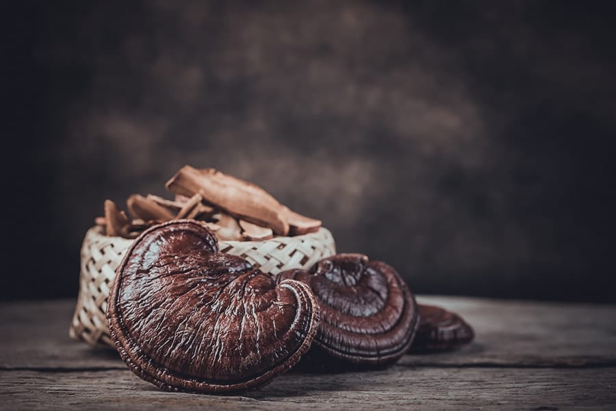 Strengthen and Protect the Kidneys With Reishi Mushroom